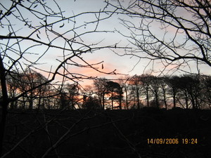 Winter_sunrise_002